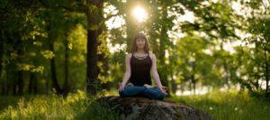 Découvrez la Conscience Animale – Méditation Exercice pratique 1